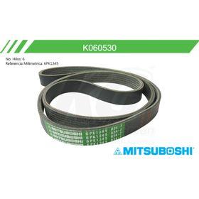 1427730-banda-poly-v-ford-focus-l4-2-0l-sohc-00-03-eurovan-l5-2-5l-01-05