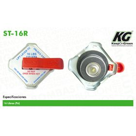1428768-tapones-de-radiador-y-deposito