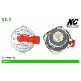 1428774-tapones-de-radiador-y-deposito