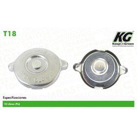1428786-tapones-de-radiador-y-deposito