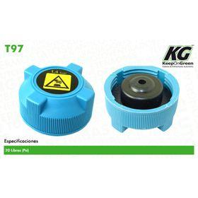 1428846-tapones-de-radiador-y-deposito